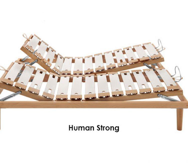 human-fga