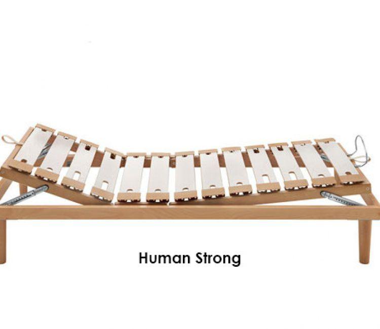 human-ga